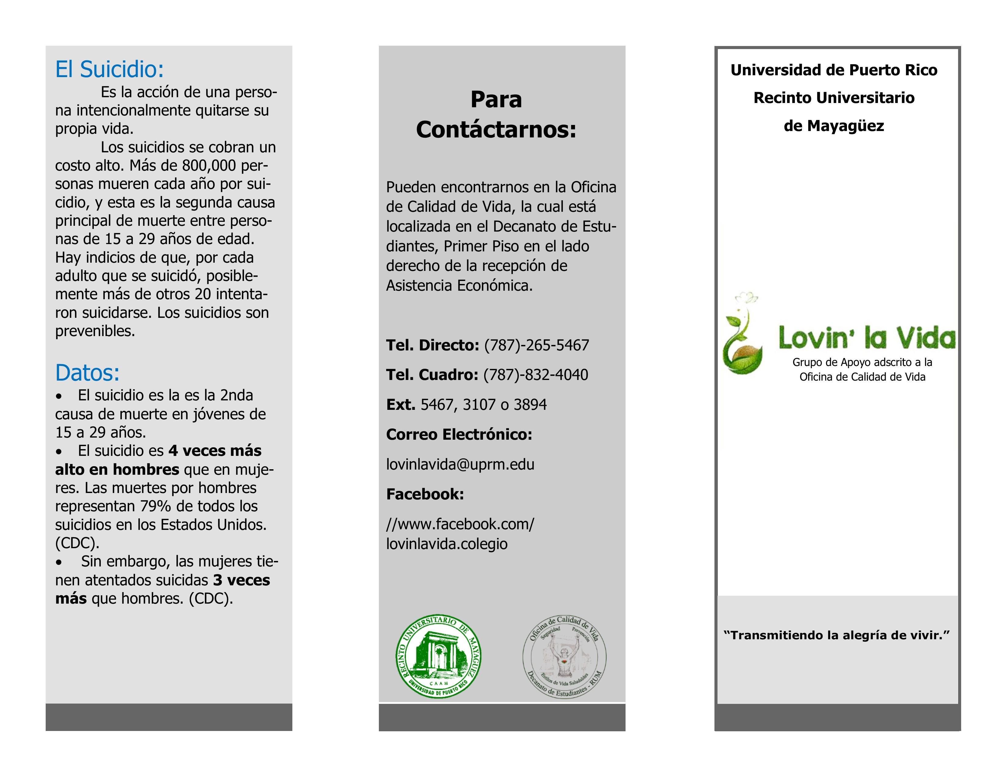 Brochure Nuevo LLV