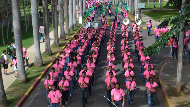 Marcha rosa 2013.