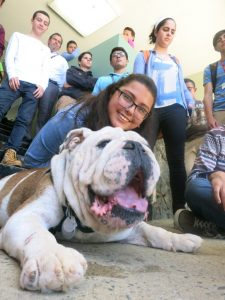 UPRM Students and Bulldog