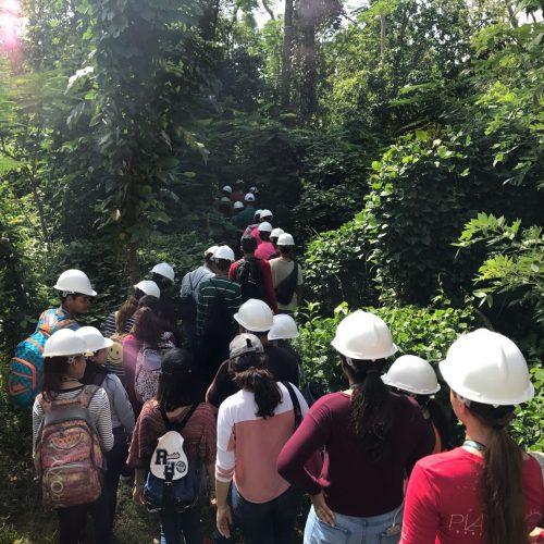 AgroScience Summer Camp at UPRM