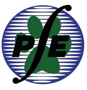 NSPE-UPRM Logo