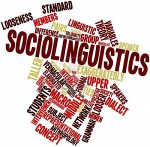 Sociolinguistics (International Masters in Sociolinguistics and Multilingualism).