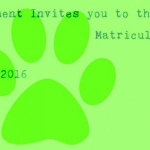 """Matrícula"" Orientation for Undergraduates"