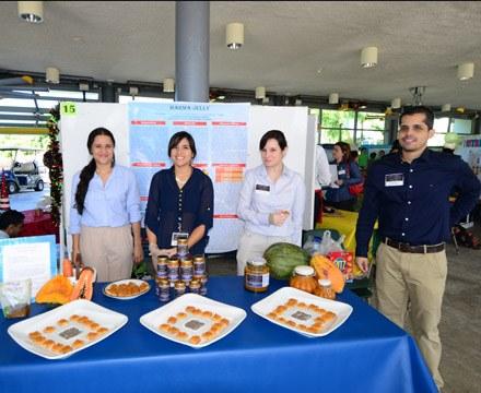 Alimentos para crear nuevos negocios