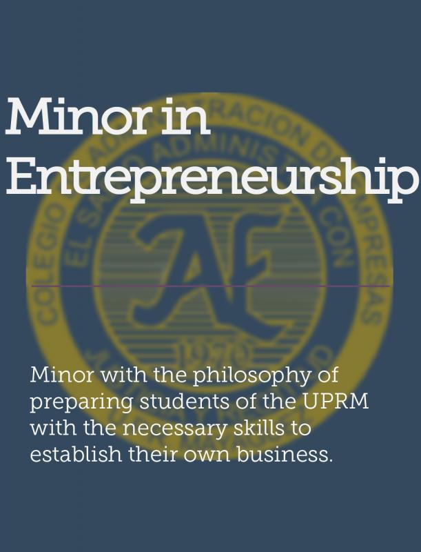 Entrepreneurship Minor