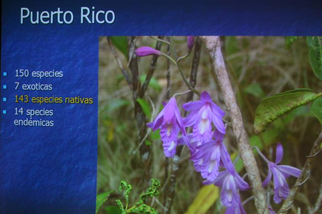 El biólogo detalló la cantidad de especies encontradas, el número de las nativas, las