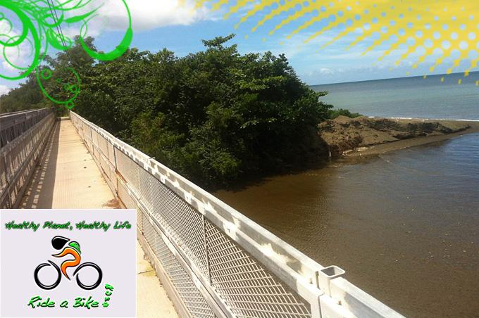 puente sobre rio guanajibo