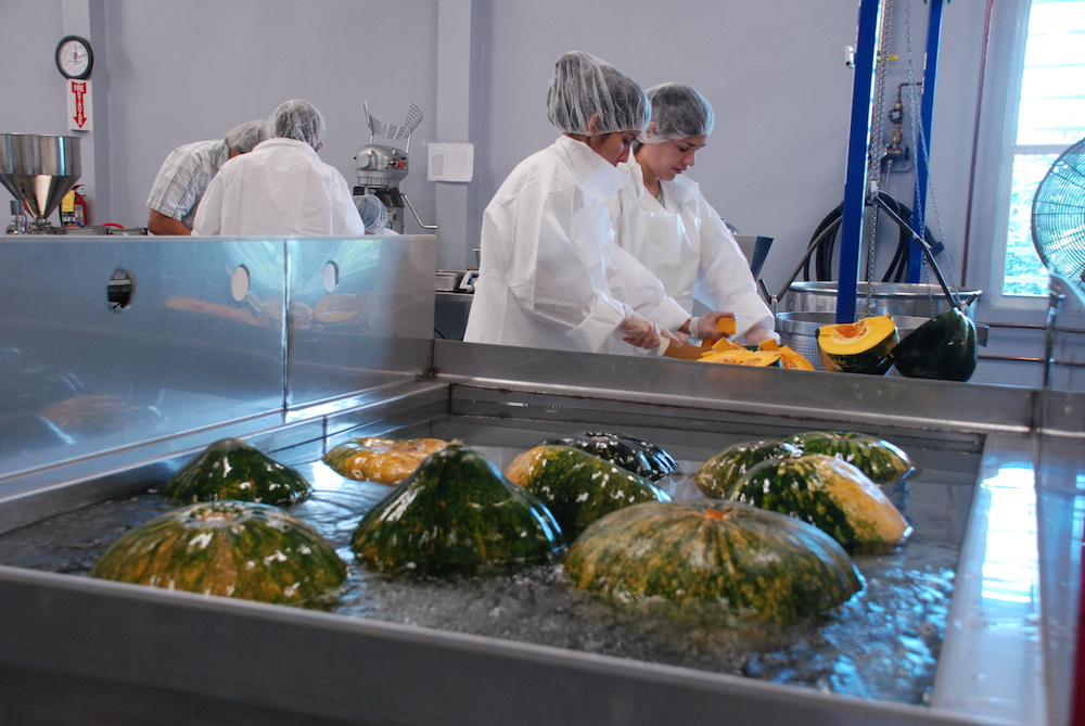 Bachillerato en Ciencias en Ciencia de Alimentos